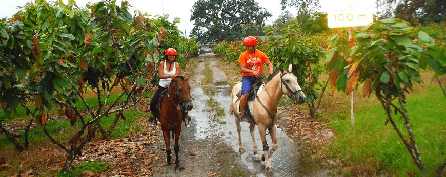 Bucay cabalgata por el campo